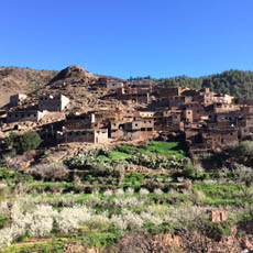 lower Atlas mountains